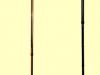 sturdy-walking-stick